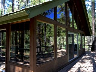 Cabin in the Cool Prescott Pines - Prescott vacation rentals