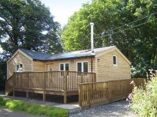 SEADRIFT CABIN all ground floor, woodburner, off road parking, decked area, in Llansteffan, Ref 915644 - Llansteffan vacation rentals
