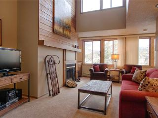 Ski Hill Condo 31 - Breckenridge vacation rentals