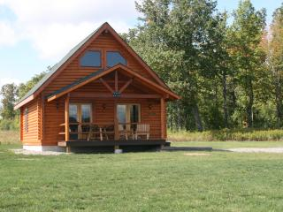 Luxurious Cabin by the woods overlooking the Lake - Finger Lakes vacation rentals
