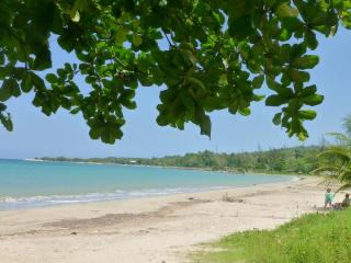 Eden Villa - walk to beach in 2 mins and free wifi - Boscobel vacation rentals