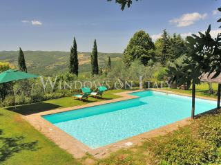 1796 - Panzano In Chianti vacation rentals