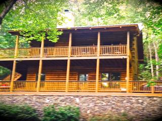 Be Charmed in the Heart of Georgia Wine Country - Dahlonega vacation rentals