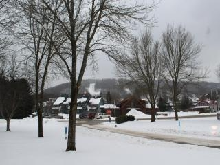Newly Updated! Walk To Holiday Valley and EVille - Ellicottville vacation rentals