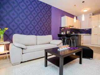 Apartment Plum - Wroclaw vacation rentals