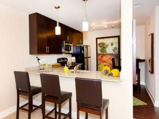 Wonderful 1 BD in Downtown(CAMBRIA421) - Kansas City vacation rentals