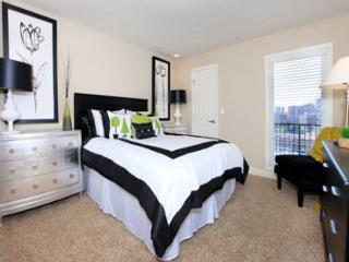 Great Studio in Downtown(CAMBRIA408) - Kansas City vacation rentals