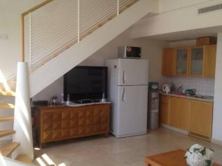 Holiday Apartment on the Lagoon - Eilat vacation rentals