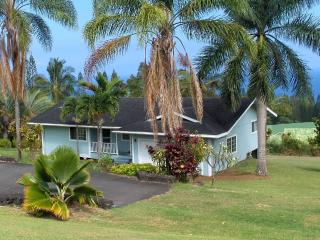 Hamakua Coast Ocean View Home - Laupahoehoe vacation rentals