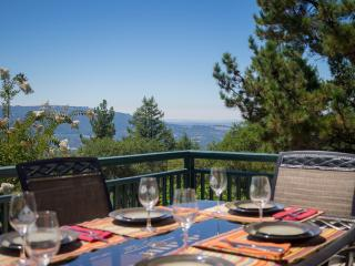 Montagne Della Luna - Private 5+ Acre Estate - Glen Ellen vacation rentals