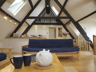 The Old Mariners House - Salcombe vacation rentals
