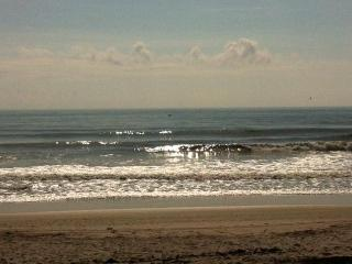 Just across the street from the Beach - Indian Harbour Beach vacation rentals