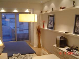 Sunny 1Br Recoleta Lovely Terrace! - Buenos Aires vacation rentals