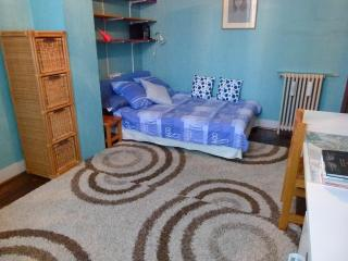 Double bedroom in a nice family home - Fontainebleau vacation rentals