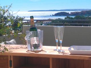 Incredible luxury T3 &  with awsome Seaview  ! - Albufeira vacation rentals