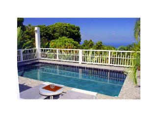 Romantic Villa - Basseterre vacation rentals