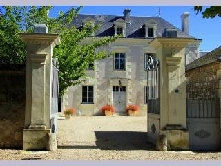 Chateau De Grazay - Loire Valley vacation rentals