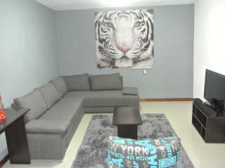 Modern fully furnished apartment, just 7 minutes walking distance of tourist attractions - Guanajuato vacation rentals