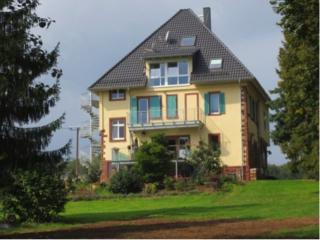 Vacation Apartment in Miltenberg - 592 sqft, new, stylish, magnificent (# 4296) - Hesse vacation rentals