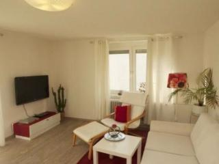 Vacation Apartment in Wolfach - 743 sqft, relaxing, quiet, natural (# 5402) - Black Forest vacation rentals
