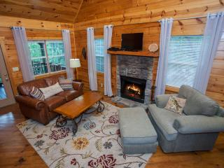 Shanty Creek - New pictures! Newly redecorated! - Ellijay vacation rentals