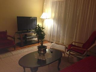 Comfortable, cozy and modern condo available! - Chicago vacation rentals