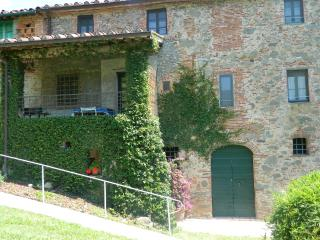 Delightful cottage between Lucca, Pisa, Florence - Lappato vacation rentals