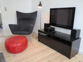 Classic apartment in center of Aarhus - Jutland vacation rentals
