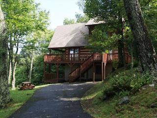 Ski Acres Place a 3 level log cabin with great view on Appalachian Ski Mtn. - Blowing Rock vacation rentals