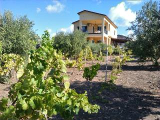 Villa - Relaxing and unforgettable Holiday - Realmonte vacation rentals