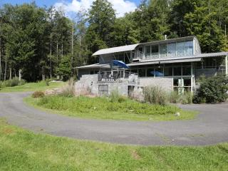 Willow House - Architect designed (14 acres, pond) - Willow vacation rentals