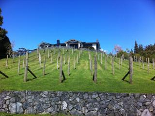 BLUE GUM RETREAT - Kerikeri vacation rentals