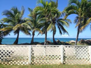 Relaxed Oceanfront Home on a Quiet Palm Fringed Sandy Beach - Hatillo vacation rentals
