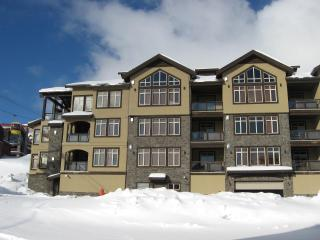 Southpoint B - Big White vacation rentals
