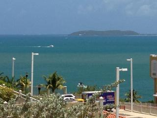 Sea View!ProfessionallyDecorated Largest Unit/Wifi - Woodston vacation rentals