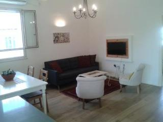 A CHARMING NEWLY RENOVATED 2 BDR ROOFTOP APT - Jerusalem vacation rentals