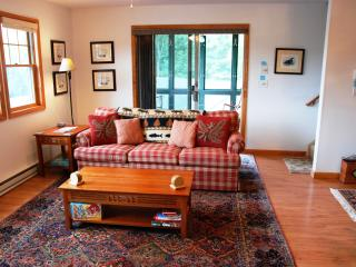 PINE HILL 37-2 - Lake Placid vacation rentals