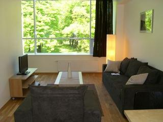 Park View 1-bed - Budapest vacation rentals
