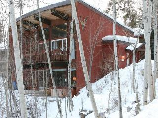 Snowshoe House - Winter Park vacation rentals