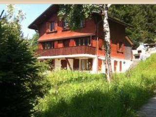 Schwarzsee mountain chalet holiday  apartments for  rent -  Fribourg Switzerland - Fribourg vacation rentals