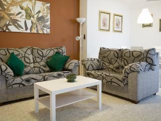 [3] Spacious apartment in the heart of Seville - Seville vacation rentals