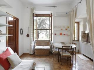 Cosy and well-organized apartment in Trastevere. - Venice vacation rentals