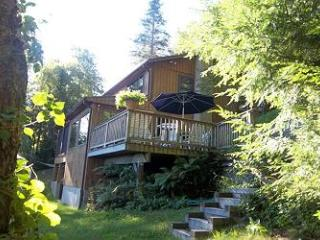 Charming Waterfront Vacation Rental on Lake Wicwas! (MAR21W) - Meredith vacation rentals
