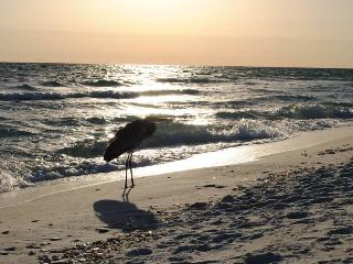 Gorgeous 3BR/2BA//Pool View//Pets-BEACH ACCESS! - Gulf Shores vacation rentals