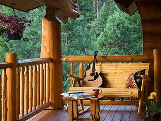 Panther Lodge - Ruidoso vacation rentals