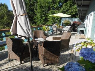 Cozy and Convenient to Ski and Bike in Winter - Bellingham vacation rentals