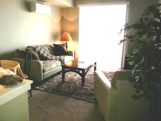 BRAND NEW 1BRM Waterfront SUITE 4 assigned parking - Tacoma vacation rentals