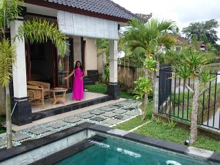 Anita's #1 Rice Field Villa - Pool, Wifi, Village - Ubud vacation rentals
