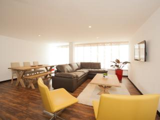 Bright & Spacious 2 Bedroom Apartment in Zona T - Buenos Aires vacation rentals