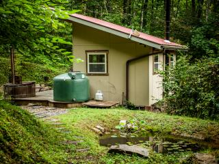 Secluded Mountain Cabin/Tiny Home w Private Trails - Hot Springs vacation rentals